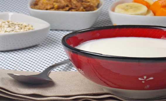 foto da receita Iogurte caseiro integral